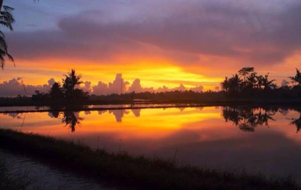 West Bali Sunset Tour