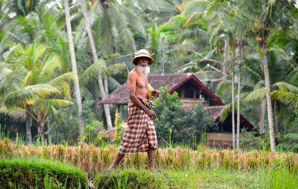 Balinese Lifestyle Tour
