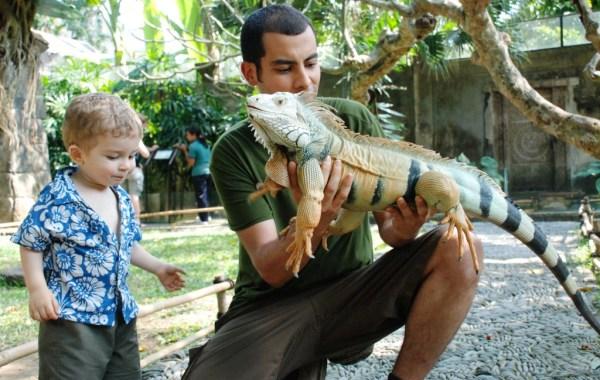 Bali Bird Park & Reptile Park